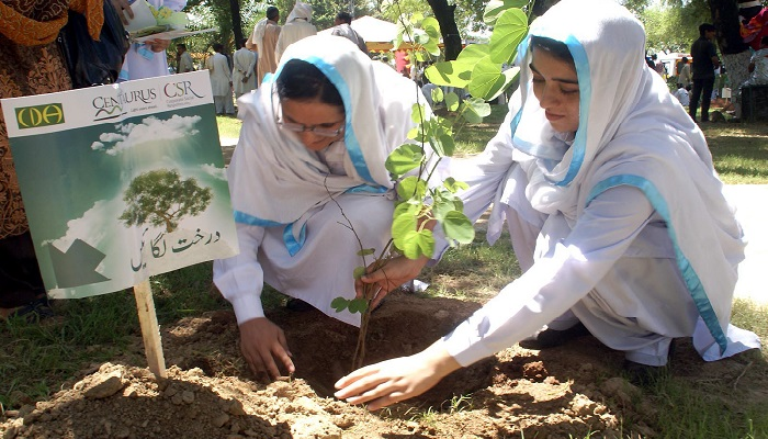 Islamabad to plant 10 million trees