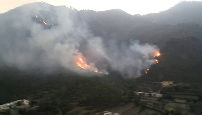 Margalla hills on fire